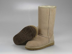 UGG WOMENS CLASSIC TALL sand 5815