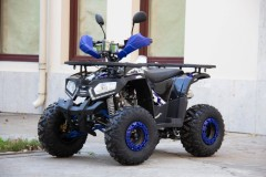 Квадроцикл Universal ATV 125 TM Fusion plus
