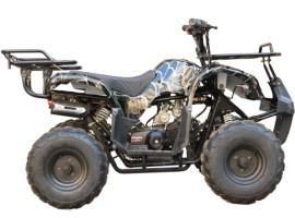 Квадроцикл Bison 110 Black