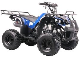 Квадроцикл Bison Spider 110 blue