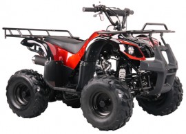Квадроцикл Bison Spider 110 red