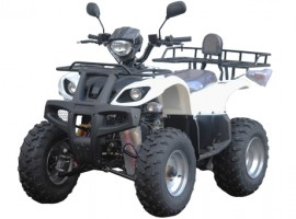 Квадроцикл ArmadA ATV 150B(10')