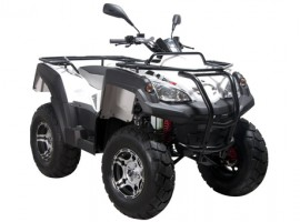 Квадроцикл ADLY LUXURY ATV320U 4WD