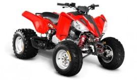 Квадроцикл Armada ATV 200L-1
