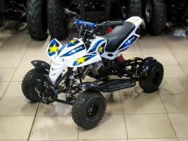Квадроцикл Bison Mini Sport 2T MX