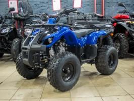 Квадроцикл Bison KXD 110U