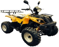"Квадроцикл Bison ATV 200 MX 10"""