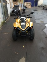 Stels ATV 100 RS Gold Edition
