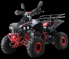 Квадроцикл бензиновый MOTAX ATV Raptor Super LUX 125 сс