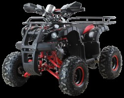 Квадроцикл бензиновый MOTAX ATV Grizlik-7 125cc