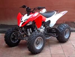 Квадроцикл Bison 250S (2020)