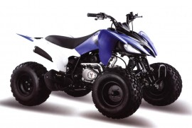 Квадроцикл Motoland 150S
