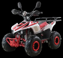 Квадроцикл бензиновый MOTAX ATV Mikro 110cc