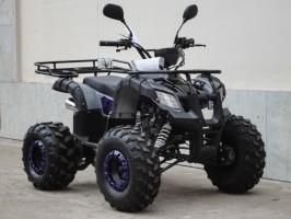 Квадроцикл Bison KIDS 125