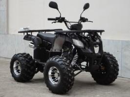 Квадроцикл Bison KIDS 125 LD