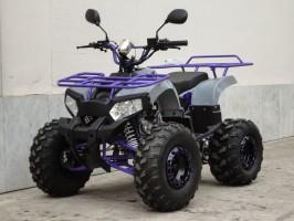 Квадроцикл Bison HESTUR