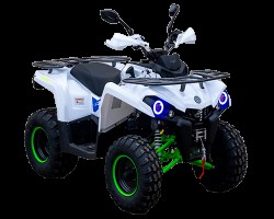 Квадроцикл RMoto HAMMER - 200L NEW (с лебедкой 300lbs)