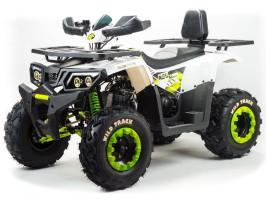 Квадроцикл Motoland WILD TRACK LUX 200