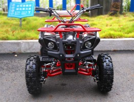 Квадроцикл Motoland ATV 50 MINI