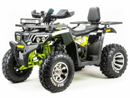 Квадроцикл Motoland WILD TRACK PRO 200