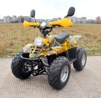 Электроквадроцикл GreenCamel Gobi K600 (36V 800W R7 Цепной привод)