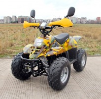 Электроквадроцикл GreenCamel Gobi K600 (36V 800W R7 Цепной привод)  Литий_30