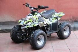 Электроквадроцикл GreenCamel Gobi K50 (36V 800W R7 Цепной привод)
