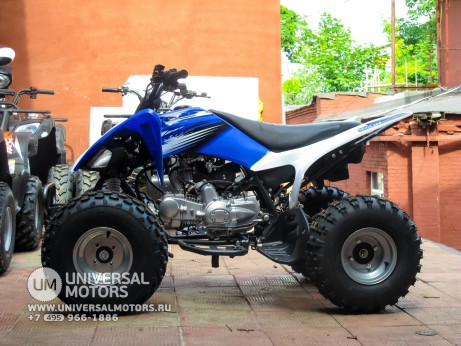 Квадроцикл BISON ATV125S ML (14987310281075)
