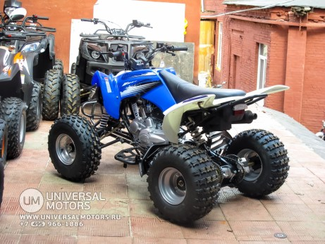 Квадроцикл BISON ATV125S ML (14987310316508)