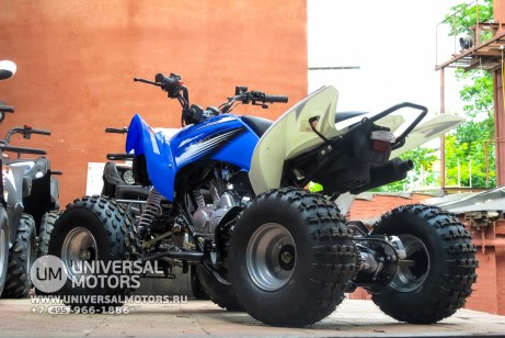 Квадроцикл BISON ATV125S ML (14987310330926)