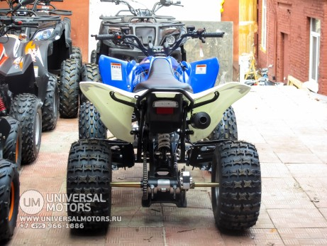 Квадроцикл BISON ATV125S ML (14987310335479)