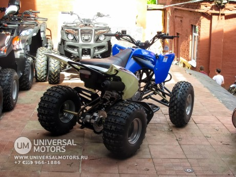 Квадроцикл BISON ATV125S ML (14987310353011)