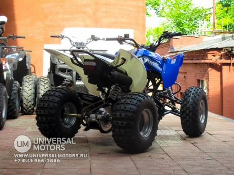 Квадроцикл BISON ATV125S ML (14987310361528)