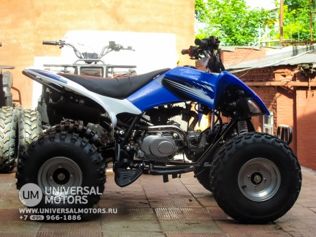Квадроцикл BISON ATV125S ML (14987310382952)