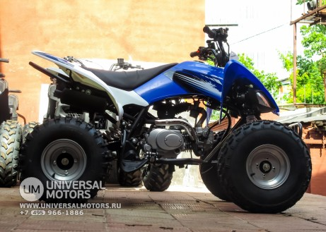 Квадроцикл BISON ATV125S ML (14987310390472)