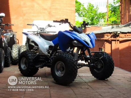 Квадроцикл BISON ATV125S ML (14987310419208)