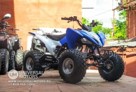 Квадроцикл BISON ATV125S ML (14987310427363)