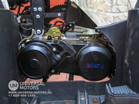 Квадроцикл Avantis Hunter 200 Premium (15133615402688)