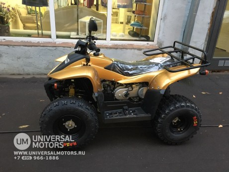 Stels ATV 100 RS Gold Edition (1476777682427)