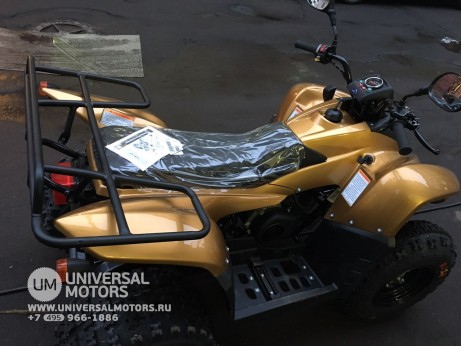 Stels ATV 100 RS Gold Edition (14767776827298)