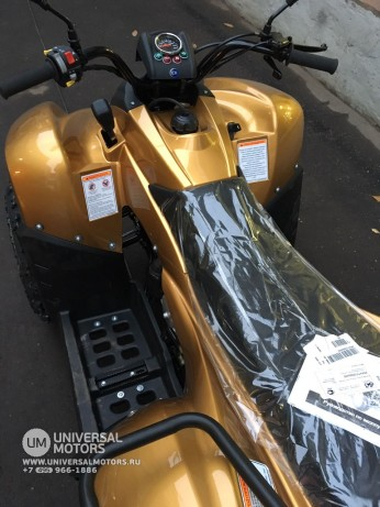 Stels ATV 100 RS Gold Edition (147677768344)