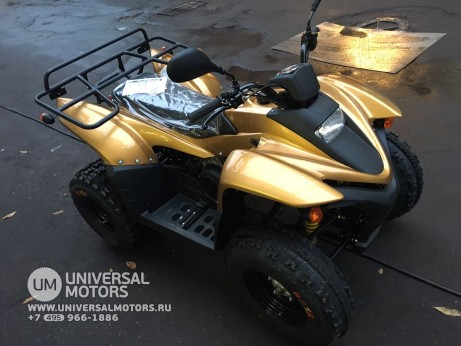 Stels ATV 100 RS Gold Edition (14767776837026)