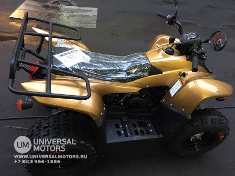 Stels ATV 100 RS Gold Edition (14767776840676)