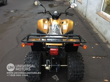 Stels ATV 100 RS Gold Edition (14767776844878)