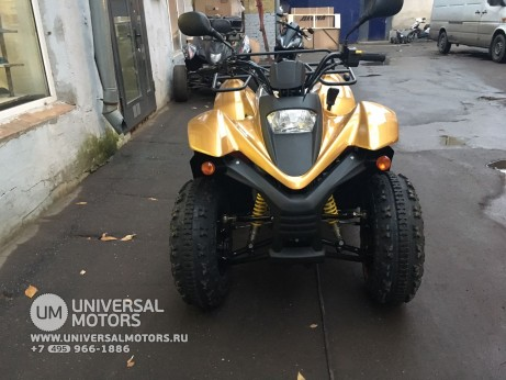 Stels ATV 100 RS Gold Edition (14767776852138)